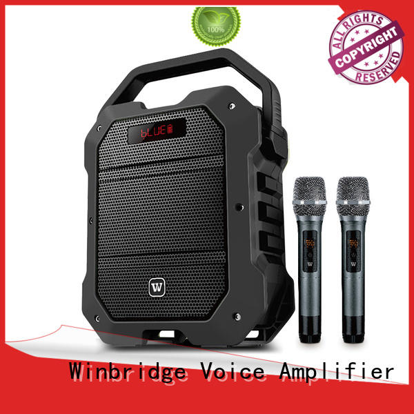 Winbridge new bluetooth pa speakers manufacturers for sale