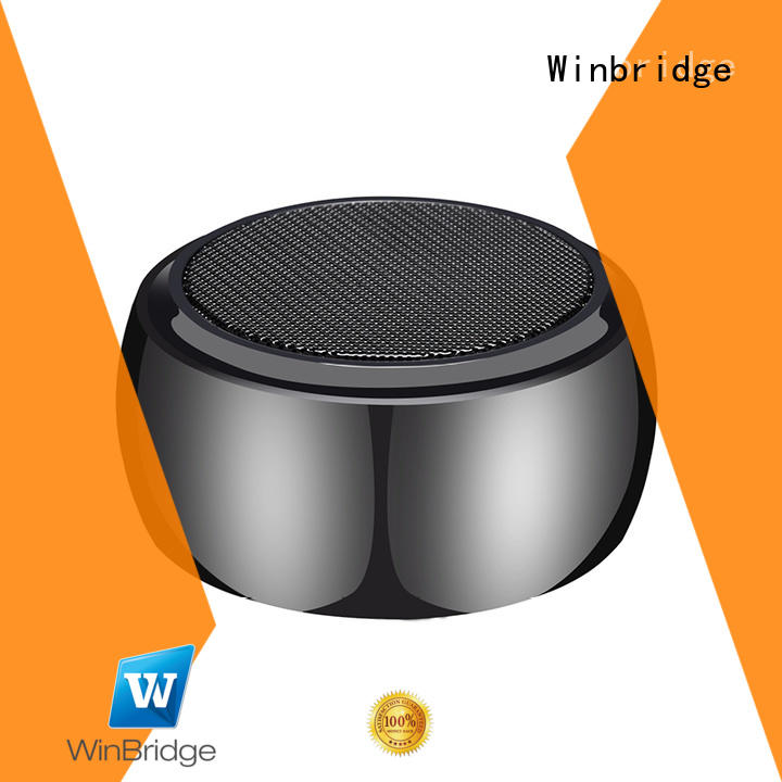 panel bluetooth speaker winbridge Winbridge company