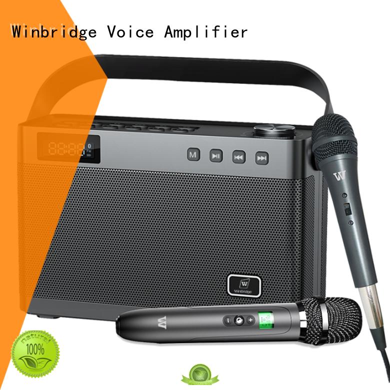 loudspeaker portable karaoke speaker with dual microphone for dance