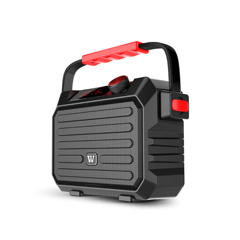Can portable PA speaker be customized?