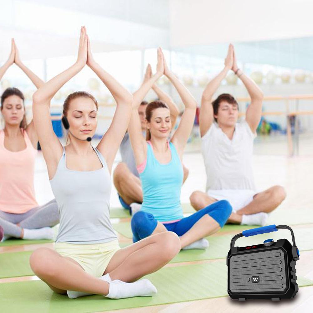 Winbridge wholesale Portable PA Speaker suppliers for speech-8