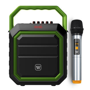 What port of loading available for portable PA speaker?