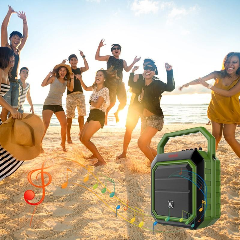 Winbridge Brand stylish portable speaker karaoke multifunction supplier