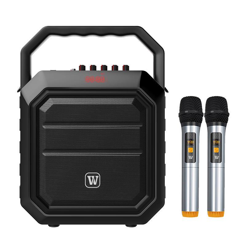 Winbridge K2 30Watt  Bluetooth portable karaoke speaker wireless voice amplifier with microphone