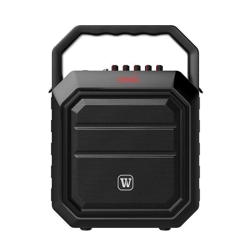 Winbridge best portable pa speakers company for sale-3