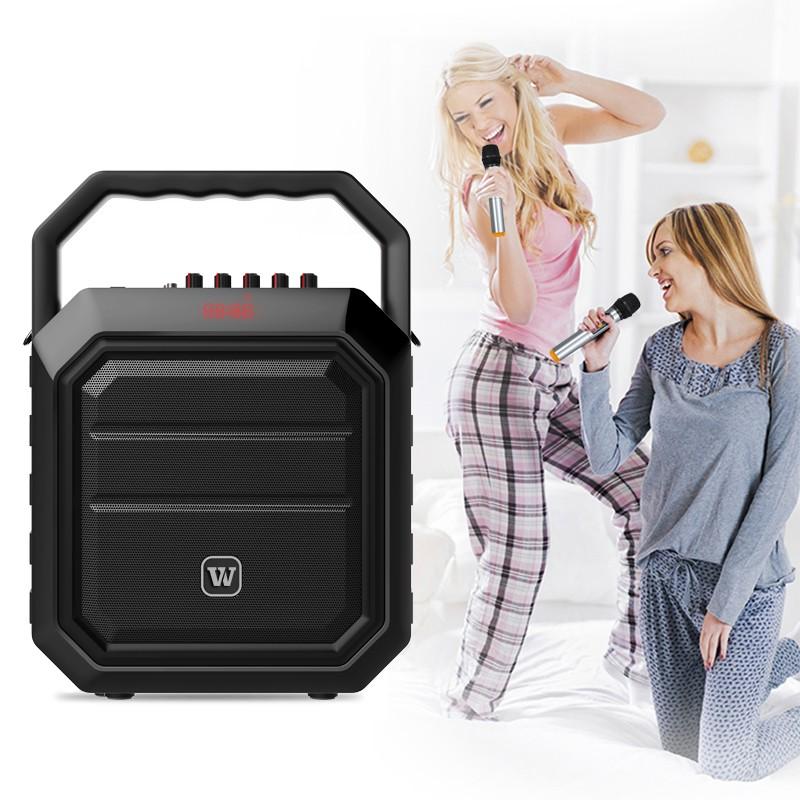 loudspeaker karaoke speaker supplier for party-7