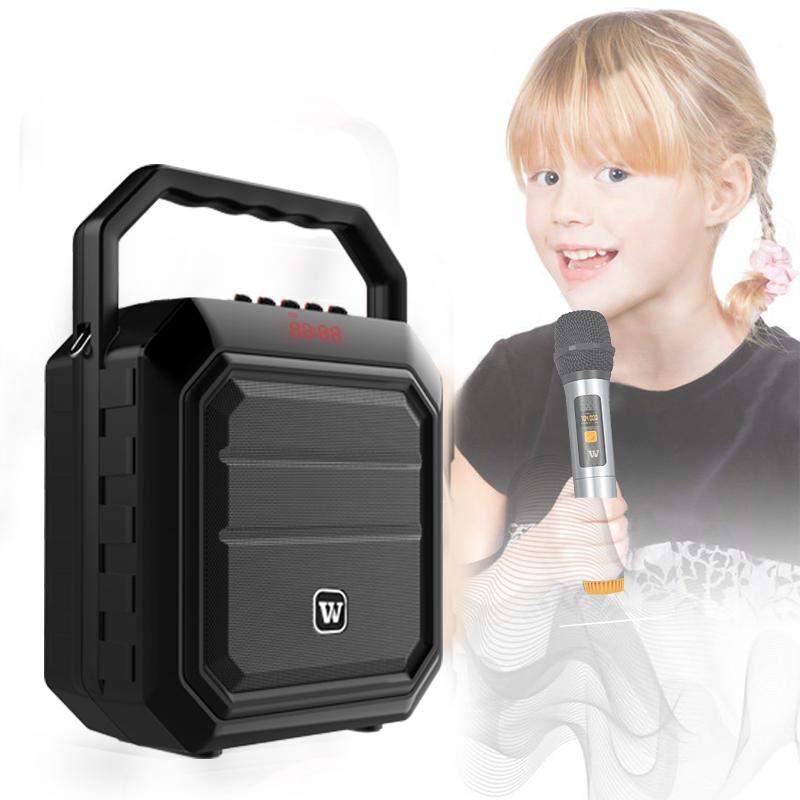 loudspeaker karaoke speaker supplier for party-9