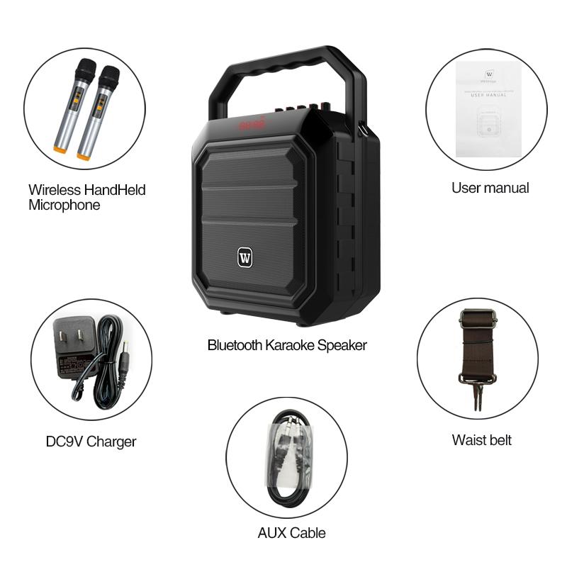 loudspeaker karaoke speaker supplier for party-15