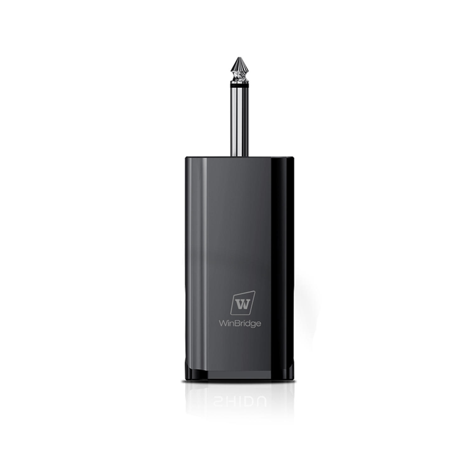 Winbridge WB031 Wireless Dual UHF Headset Microphone With Receiver