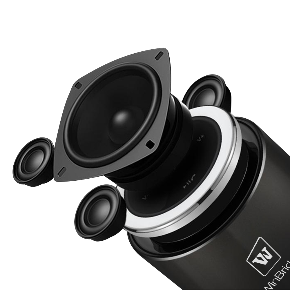 Winbridge best bluetooth speaker factory for cafe-1