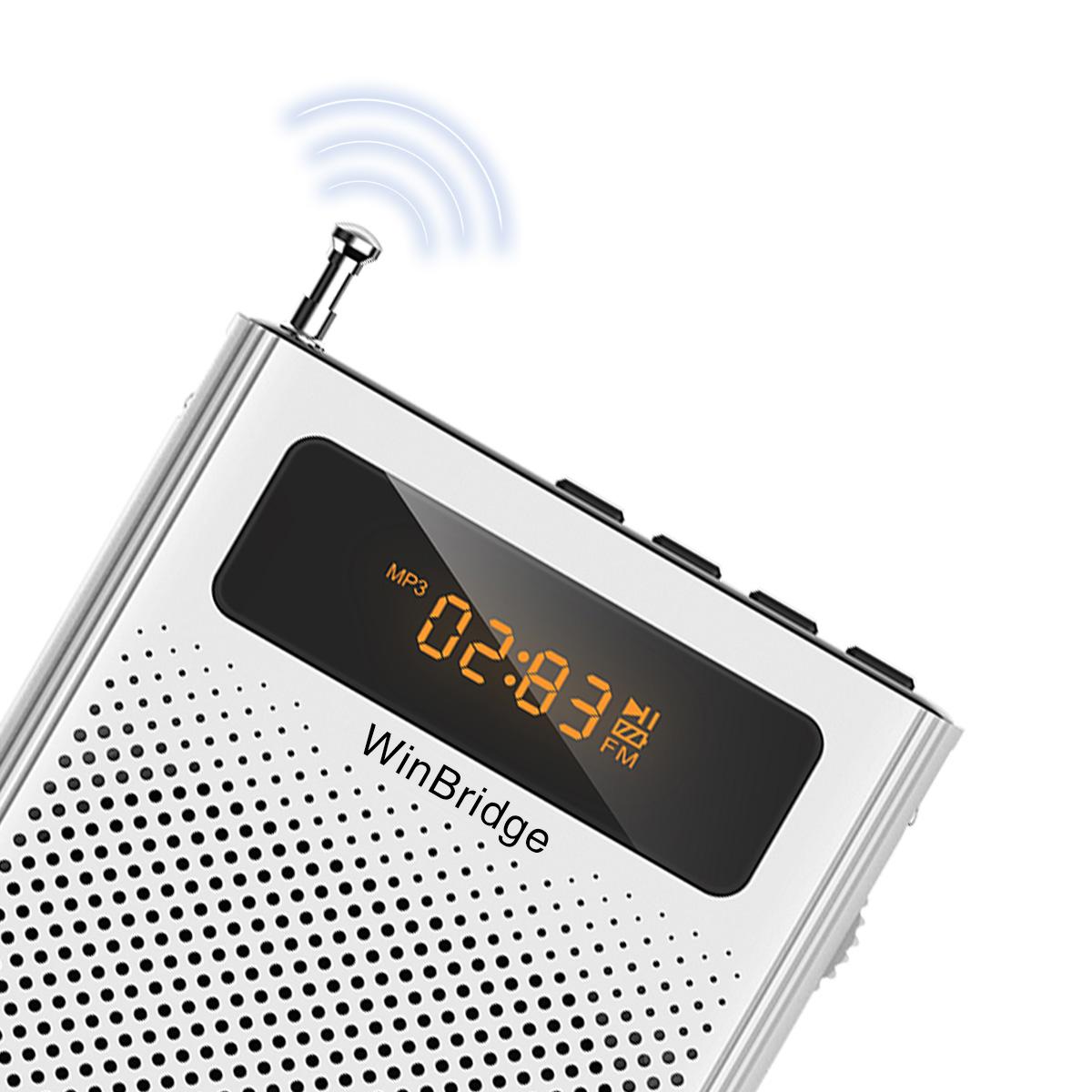 Winbridge winbridge voice amplifier factory for sale-13