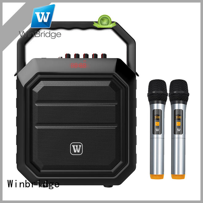 portable portable karaoke speaker with dual microphone for dance