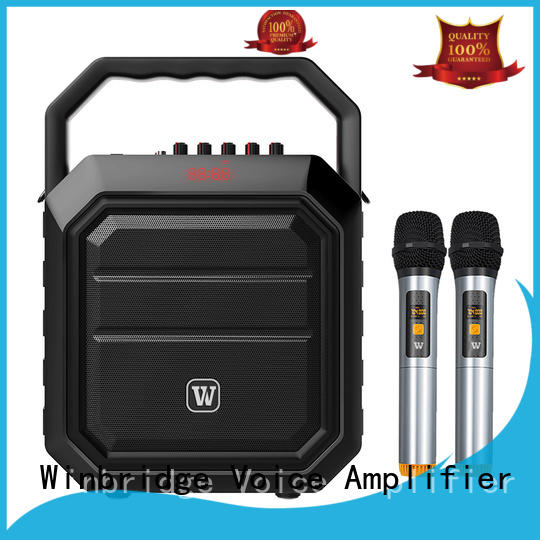customized karaoke speaker with microphone manufacturer for sale Winbridge