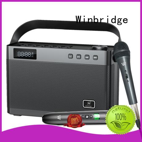 voice best karaoke speakers manufacturer for sale