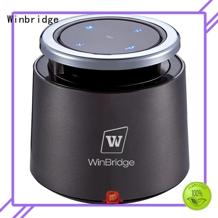 best bluetooth speaker hot sale for party Winbridge