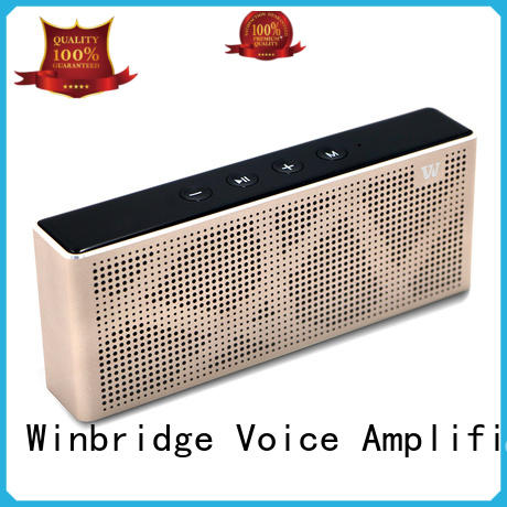 Winbridge hot sale bluetooth computer speakers wholesale for riding