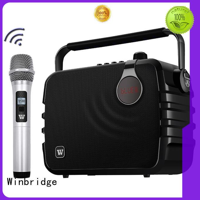 best karaoke speakers for party Winbridge