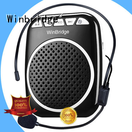hot sale portable voice amplifier high end for speech Winbridge