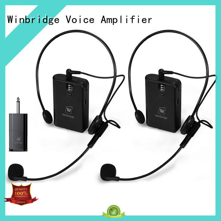 winbridge voice amplifier high end for sell Winbridge