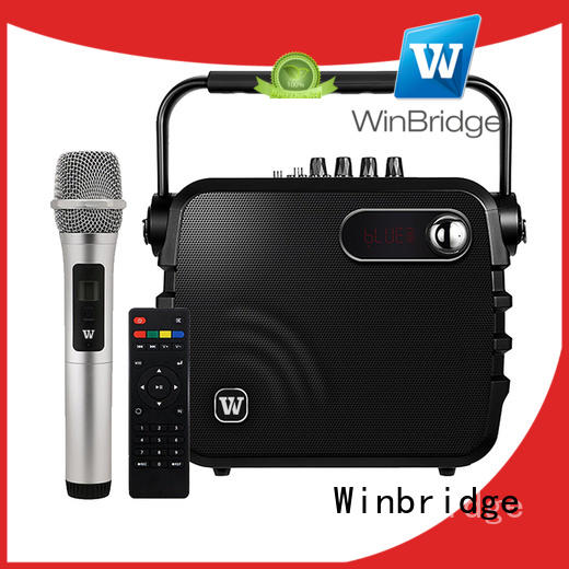 amplifier karaoke microphone and speaker manufacturer for sale