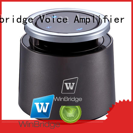 portable wireless bluetooth speakers for party Winbridge