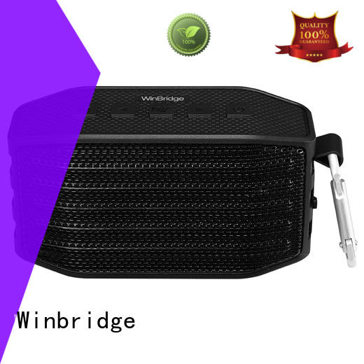 large bluetooth speakers for cafe Winbridge