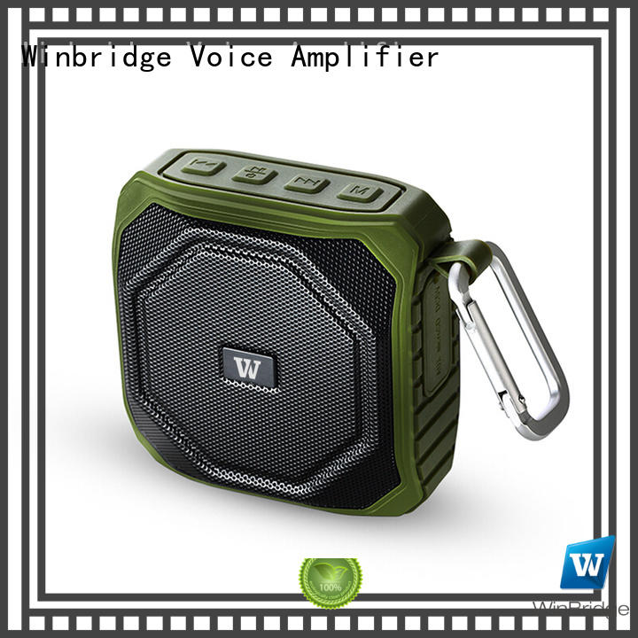portable panel exquisite cheap bluetooth speakers Winbridge manufacture