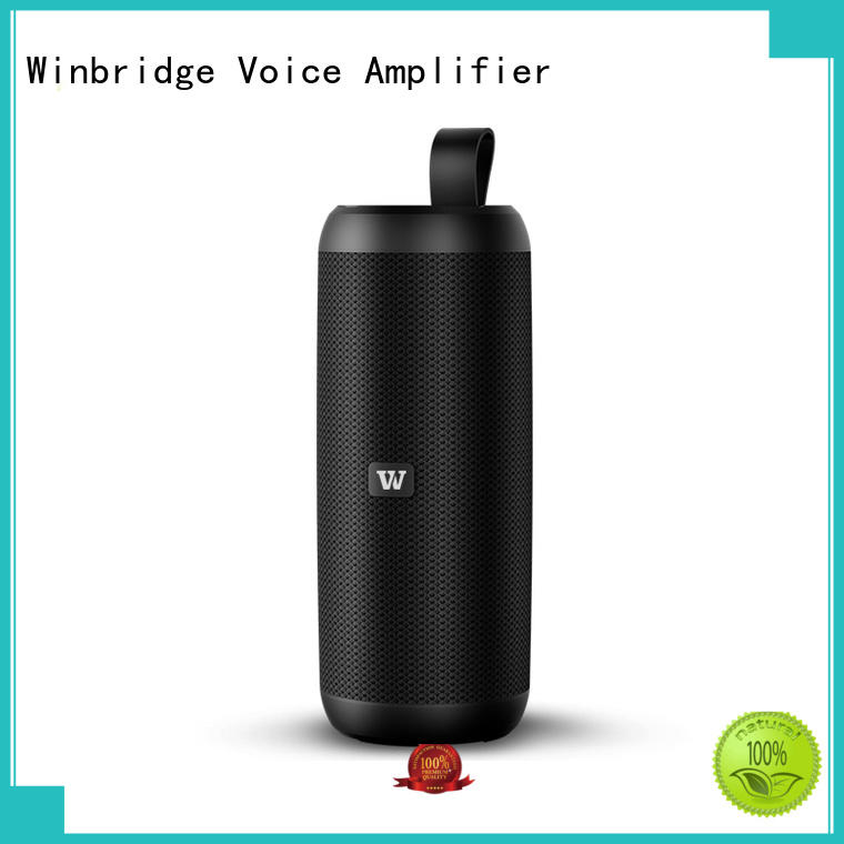 Winbridge exquisite bluetooth home speakers company for home