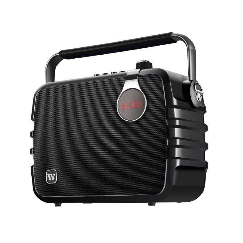 Winbridge karaoke microphone and speaker maker for dance-1
