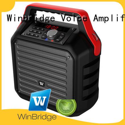 Custom comfortable karaoke speaker bluetooth Winbridge
