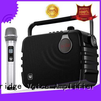 high quality best karaoke speakers home use customized for street performance Winbridge