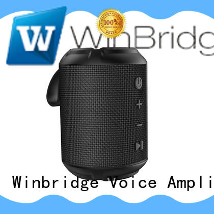 cool bluetooth speakers customized for riding Winbridge