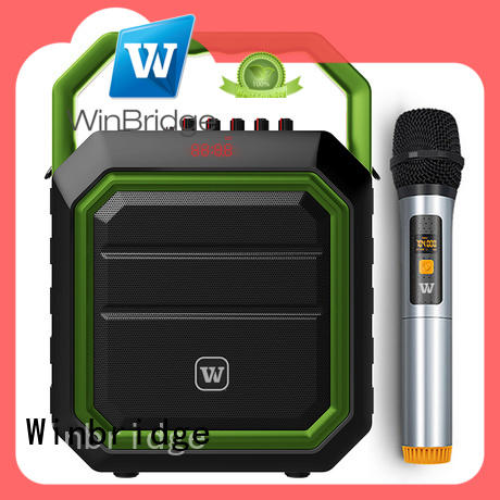 Winbridge customized karaoke speaker box with dual microphone for party