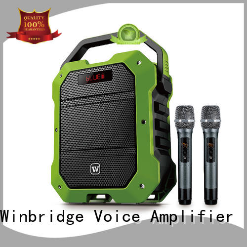 Winbridge voice karaoke microphone and speaker with fm wireless microphone for sale