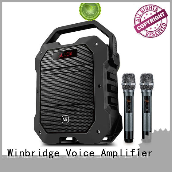 customized professional karaoke speakers with dual microphone for party Winbridge