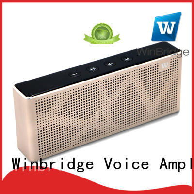 big bluetooth speakers for party Winbridge