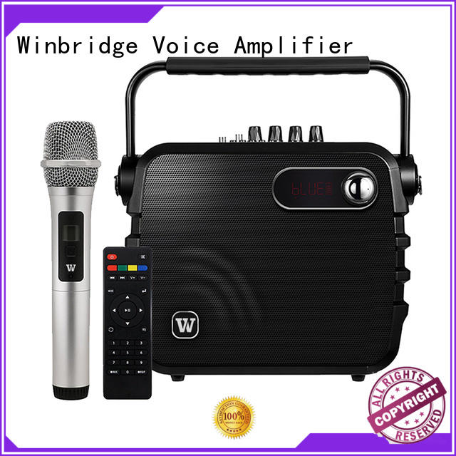voice portable bluetooth karaoke speaker with dual microphone for party