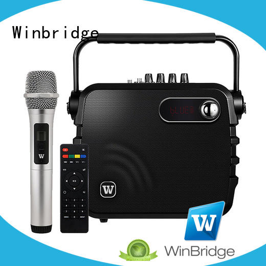 Hot karaoke speaker winbridge Winbridge Brand