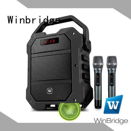 bluetooth karaoke speaker with fm wireless microphone for dance Winbridge