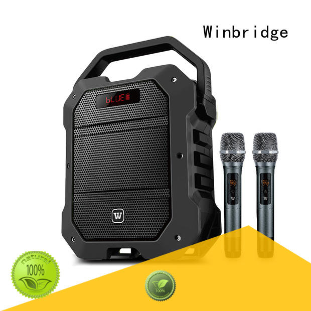 Winbridge high quality karaoke speaker with dual microphone for dance