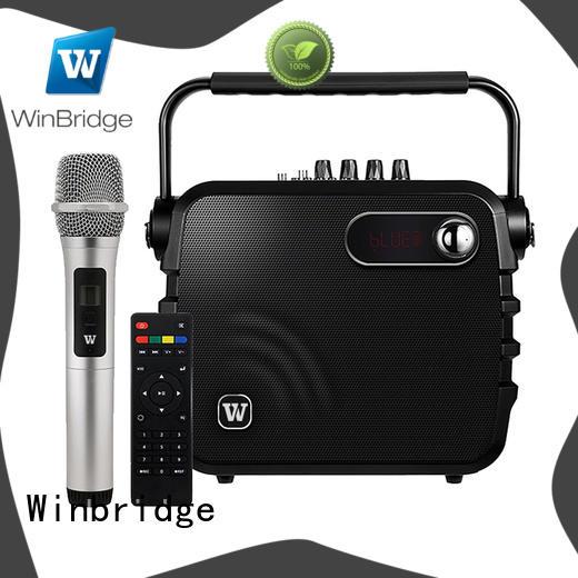 professional karaoke speakers for sale Winbridge