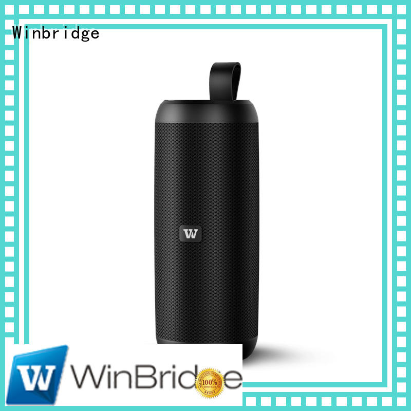 cheap bluetooth speakers panel bluetooth speaker Winbridge Brand