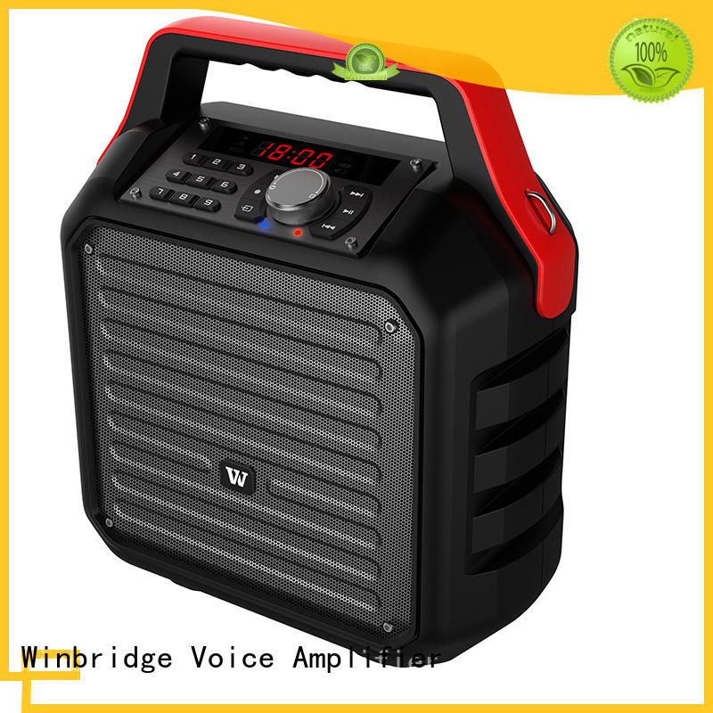 Winbridge hot sale portable karaoke speaker with fm wireless microphone for street performance