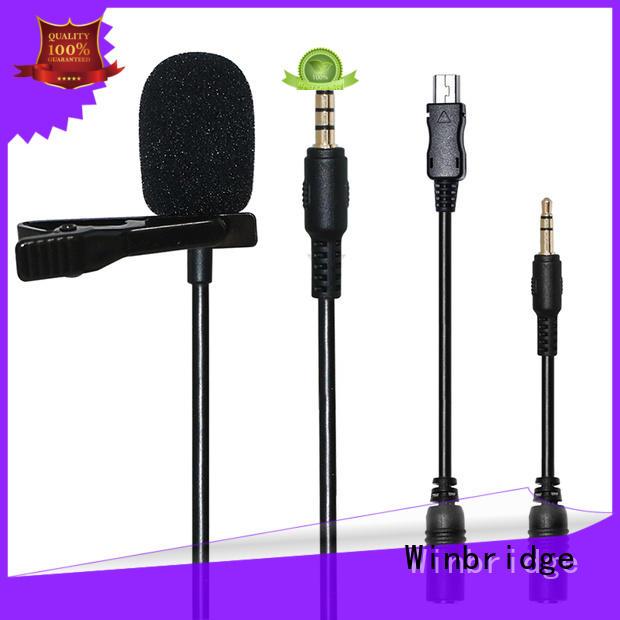 recording wireless mic system supplier for speech Winbridge