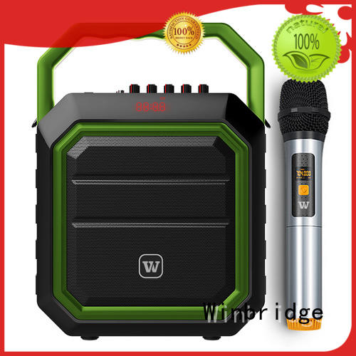 loudspeaker karaoke microphone with speaker with fm wireless microphone for party