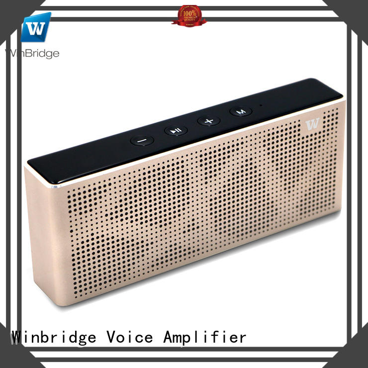 exquisite bluetooth home speakers manufacturer for home