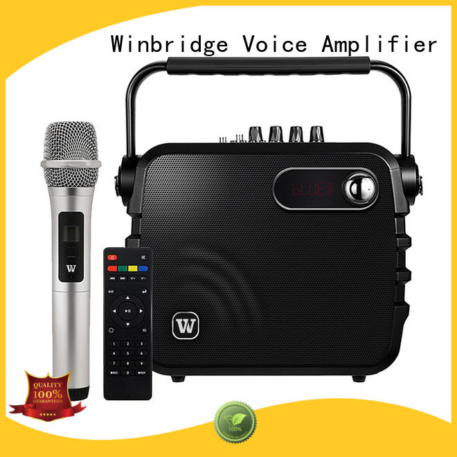 stylish winbridge OEM karaoke speaker Winbridge
