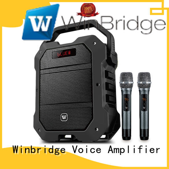 voice karaoke microphone with speaker manufacturer for street performance