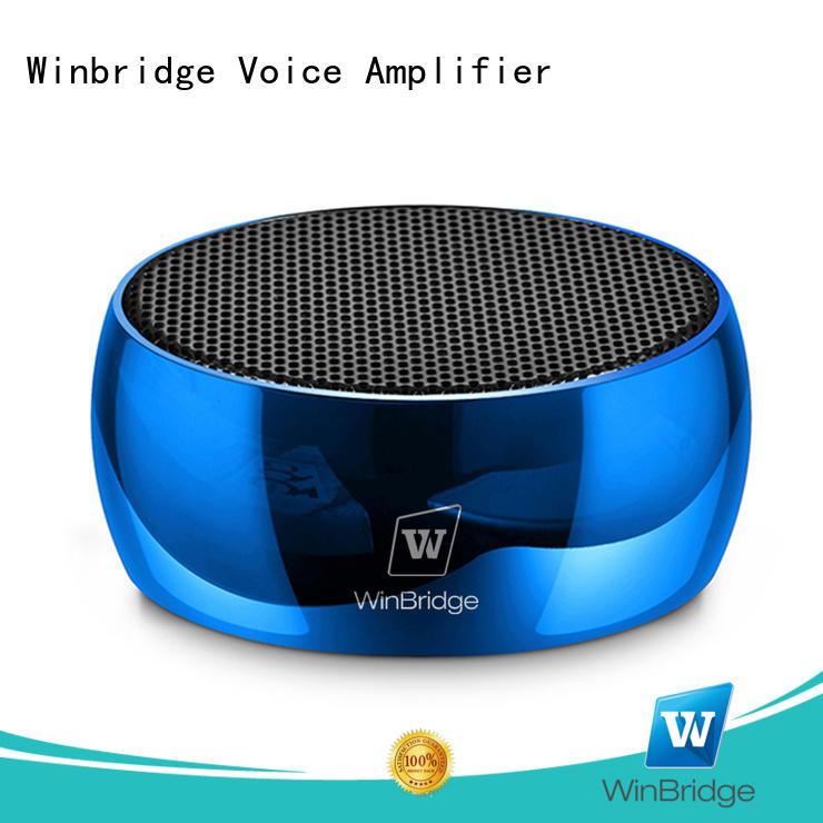 bluetooth home speakers for home Winbridge