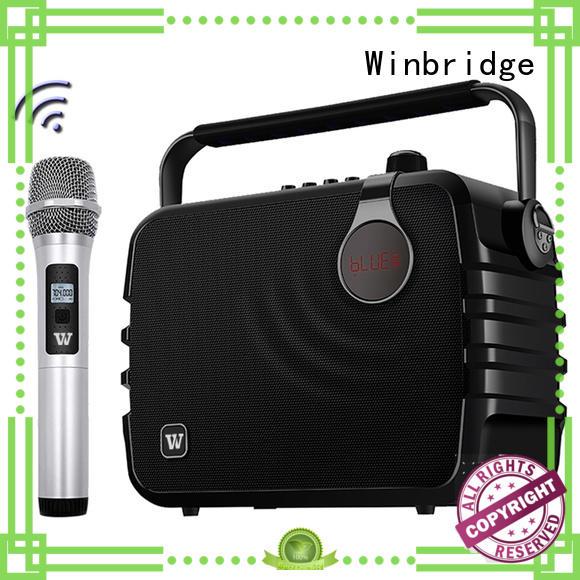 best best karaoke speakers with fm wireless microphone for sale